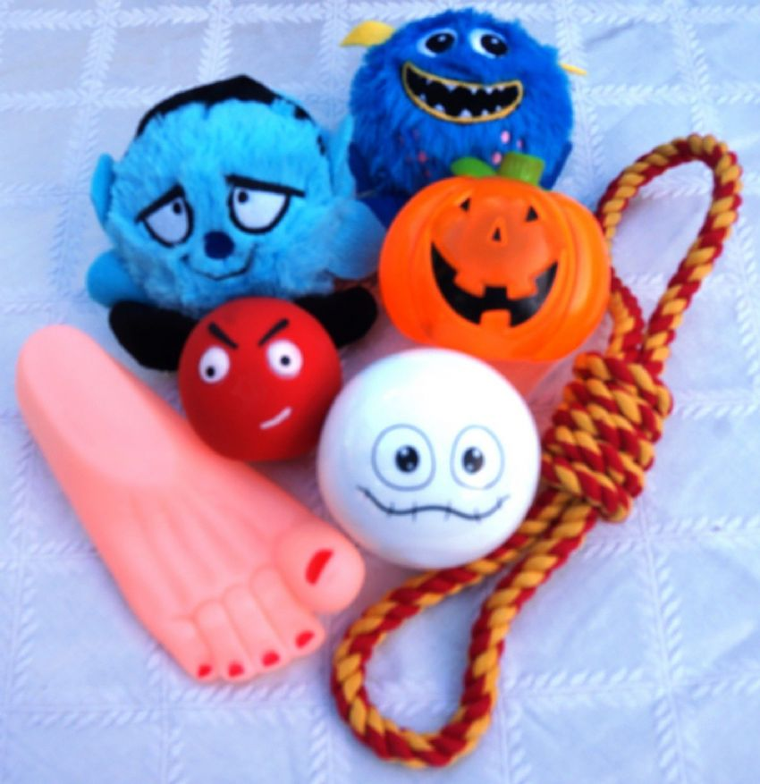 HALLOWEEN DOG TOY SET 7 FAB TOYS INCLUDES FLASHING SPOOKY BALL & CREEPY CRITTERS